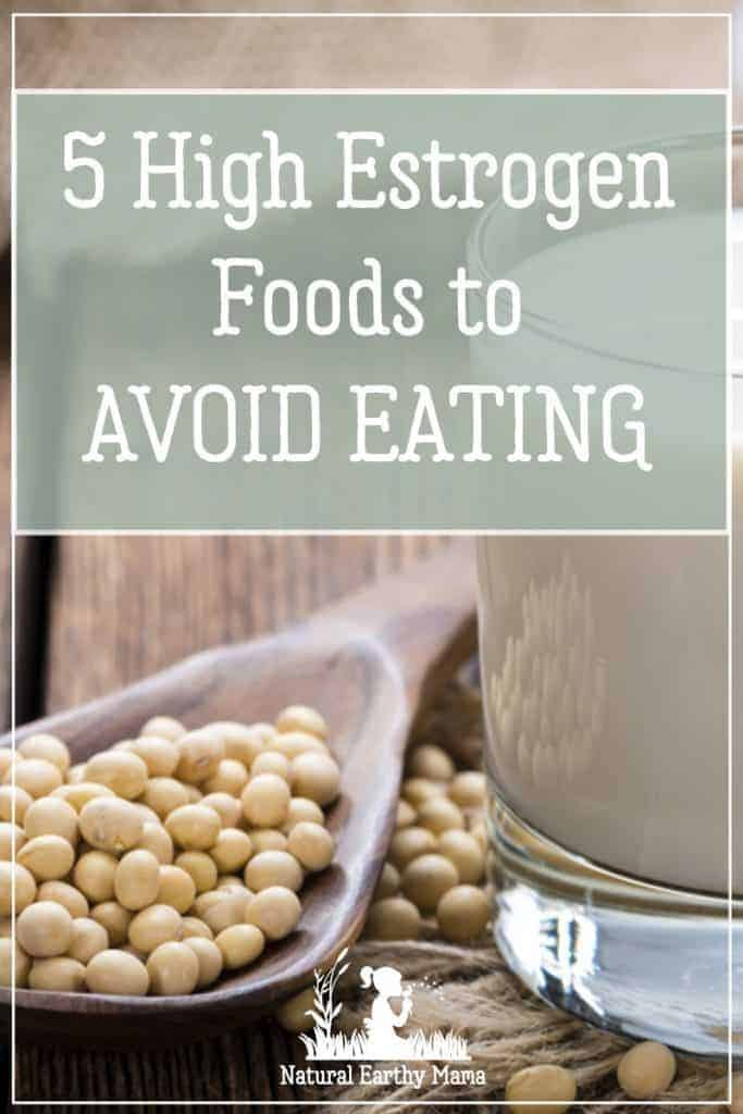5 High Estrogen Foods To Avoid Natural Earthy Mama