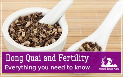If you are struggling with infertility, then you may like to look in to some natural alternatives and herbal supplements to boost your fertility Dong Quai is a traditional Chinese herbal medicine that can be used in improving your fertility #naturalearthymama