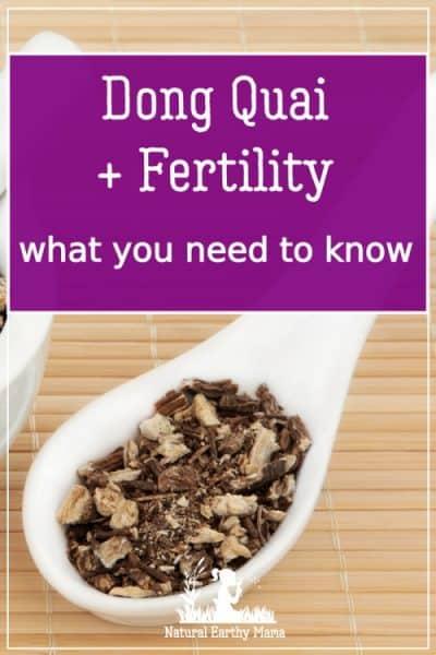 Top 9 Benefits of Dong Quai for Fertility