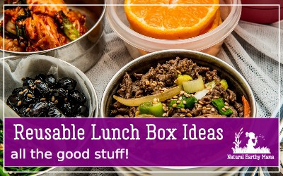 When it comes to eating healthy, you are likely going to want to take your lunch to work each day or packing lunches for your family members. Reusable lunch containers are a great answer!